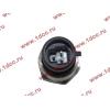 Датчик давления масла H3 HOWO (ХОВО) VG1540090035/1 фото 2 Пермь