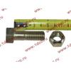 Болт M14х45 карданный с гайкой H2/H3 HOWO (ХОВО) Q151C1445 фото 2 Пермь