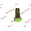 Болт пустотелый М10х1,0 (штуцер топливный) H HOWO (ХОВО) 81500070054 фото 3 Пермь